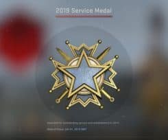The CS:GO 2019 Service Medals Now Available